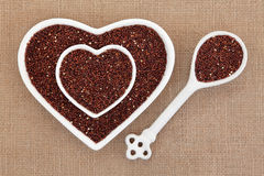 Quinoa Super Food Royalty Free Stock Photography