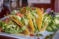 Quinoa taco's Stock Fotografie
