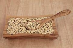 Quinoa tricolore Photographie stock