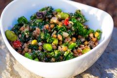 Quinoa van het Paleodieet Boerenkoolsalade stock foto's