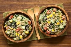 Quinoa and Vegetable Salad royalty free stock images