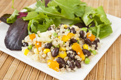 Quinoa and Vegetable Salad Stock Image