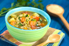 Quinoa and Vegetable Soup Royalty Free Stock Photo