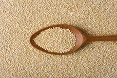 Quinoa vrai sur une cuillère en bois Photographie stock libre de droits