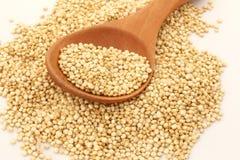 Quinoa złoto Obraz Royalty Free