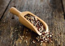 Quinoa zaden in houten lepel stock foto
