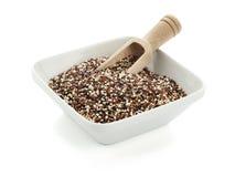 Quinoa zaden in vierkante kom met houten schop royalty-vrije stock afbeelding