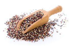 Quinoa ziarna obraz royalty free