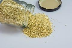 Quinoaen kärnar ur på flaskan Royaltyfria Foton