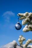 Quinquilharia do Natal em um pinheiro Fotos de Stock Royalty Free