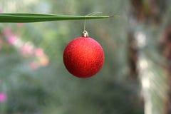 Quinquilharia do Natal em uma palmeira foto de stock