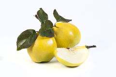 Quinse Royalty Free Stock Image