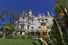Quinta da Regaleira palace and strelitzia Stock Photography