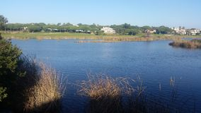 Quinta do Lago. Natural reserve of Ria Formosa Stock Photography