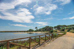 Quinta hace el paisaje de Lago, en Algarve Fotografía de archivo
