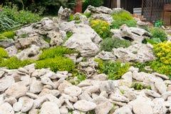 Quintal com ajardinar fantástico, o pátio, a cerca e a cama aumentada, seca - plantas resistentes Uma cama de flor das pedras par Fotografia de Stock Royalty Free