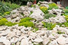 Quintal com ajardinar fantástico, o pátio, a cerca e a cama aumentada, seca - plantas resistentes Uma cama de flor das pedras par Foto de Stock Royalty Free