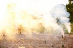 Quintal fumarento com as crianças que olham fogos-de-artifício Foto de Stock