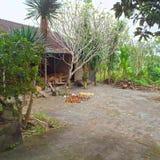 Quintal, projeto de jardinagem em Bali Fotografia de Stock Royalty Free