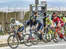 The Quintana Brothers - Volta Ciclista a Catalunya 2016. Barcelona, Spain - March27, 2016: The Quintana brothers riding in the peloton during Volta Ciclista a stock photography