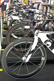 Quintana Roo bicycles on display. Royalty Free Stock Photo