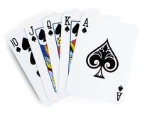 Quinte royale jouant des cartes Photographie stock libre de droits