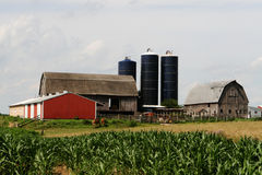 Quintessential American Farm. Mid West American Farm with Barn, Silos and Outbuildings stock photo