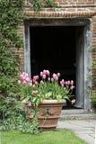 Quintessential vibrant English country garden scene landscape wi Stock Photography