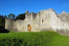 Quintilla Irlanda del Co. del castillo de Adare Foto de archivo libre de regalías