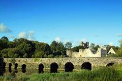 Quintilla Irlanda del Co. del castillo de Adare Foto de archivo