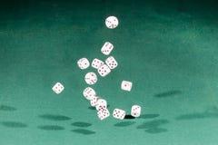 Quinze brancos cortam a queda em uma tabela verde imagem de stock royalty free