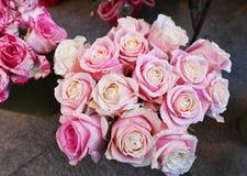 Quinze roses roses dans un vase image libre de droits