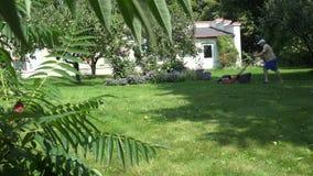 Équipez le travail avec la tondeuse à gazon dans le jardin d'agrément à l'été 4K banque de vidéos