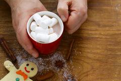 Équipez tenir un cacao chaud de tasse avec des guimauves, boisson de Noël Images libres de droits