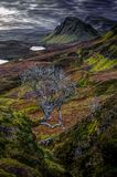 The Quiraing: early october morning. Northeast coast of Trotternish Peninsula, Isle of Skye, Inner Hebrides, Scotland, United Kingdom, Europe stock images
