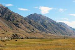 Quirguizistão - região central de Tien Shan Foto de Stock