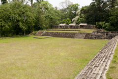 Quirigua national park in Guatemala. The ruins of Quirigua contain some outstanding 8th-century monuments and are now designated as a UNESCO World Heritage Royalty Free Stock Images