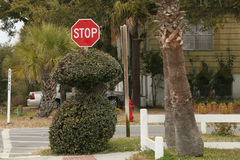 Quirky Stop Sign Stock Photo