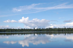Quistococha lake reflections, Iquitos, Peru Stock Photo