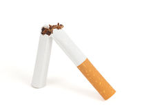 Free Quit Smoking Royalty Free Stock Photos - 10983898