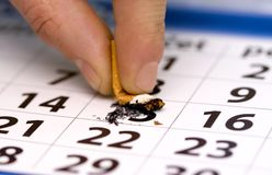 Quit smoking. And calendar date Royalty Free Stock Photo