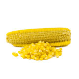 Quitando la semilla del maíz aislada en blanco Imagen de archivo