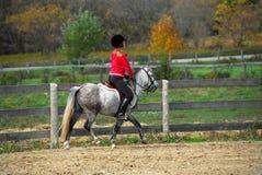 Équitation Images libres de droits