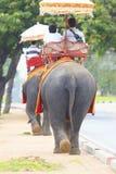 Équitation de touristes sur la marche arrière d'éléphant sur la route latérale à l'observation Image stock