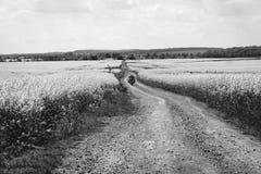 ?quitation extr?me de sport d'homme voyageant la moto d'enduro sur la salet? beau champ jaune des fleurs Cavalier d'aventure du m photos stock