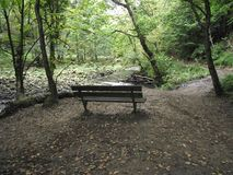 A Quite bench to sit on royalty free stock photo