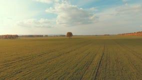 Quite el campo con los surcos de la maquinaria agrícola almacen de metraje de vídeo