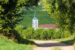 A quite road leading towards a French church and beautiful forest in the Alsace Stock Images
