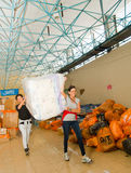 Quito, Ecuador - April,23, 2016: Bags of supplies for disaster relief with food, clothes, medicine and water for Stock Images