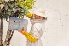 QUITO, ECUADOR, MARZO, 21, 2018: Opinión al aire libre el apicultor que recoge la miel en un panal y las abejas, el llevar un lle Fotografía de archivo libre de regalías